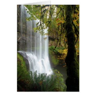 A Waterfall At Silver Falls State Park Card