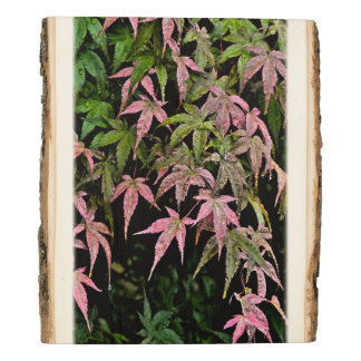 """""""A 'WATERFALL' OF PINK AND GREEN LEAVES"""" WOOD PHOT WOOD PANEL"""