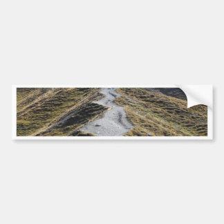 A way in alpine grassland bumper sticker