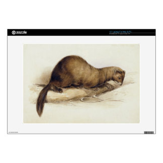 A Weasel, 1832 (w/c, pen, ink, gouache and gum ove Laptop Skin