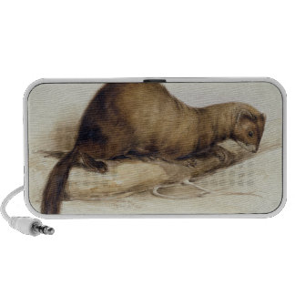 A Weasel, 1832 (w/c, pen, ink, gouache and gum ove Notebook Speaker