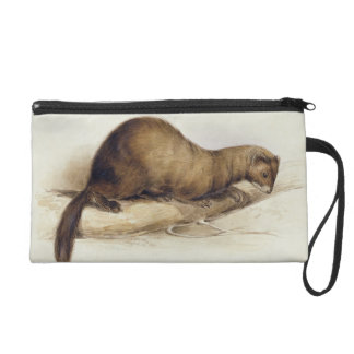 A Weasel, 1832 (w/c, pen, ink, gouache and gum ove Wristlet