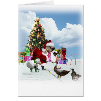 A Web Footed Christmas Greeting Cards