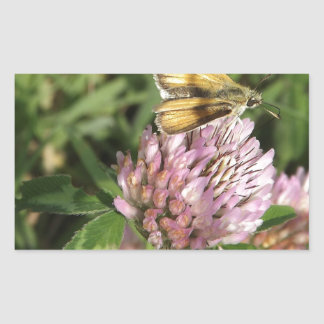 A wee moth on a wee flower rectangular sticker