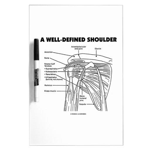 A Well-Defined Shoulder (Anatomical Humor) Dry-Erase Board