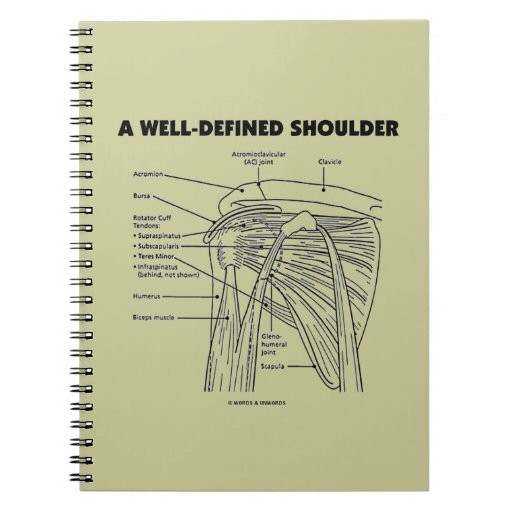 A Well-Defined Shoulder (Anatomical Humor) Note Books