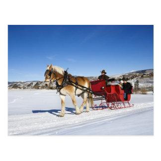 A Western Christmas - Horse Christmas Sleigh Postcard