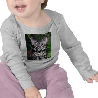 A Wet Little Bobcat Kitten Tshirts