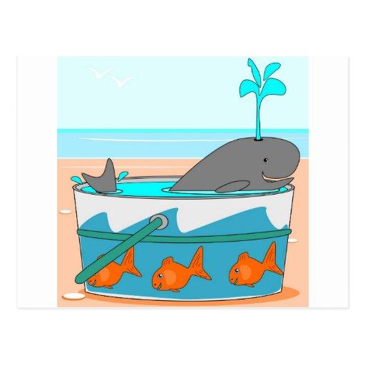 A Whale in a pail Postcard