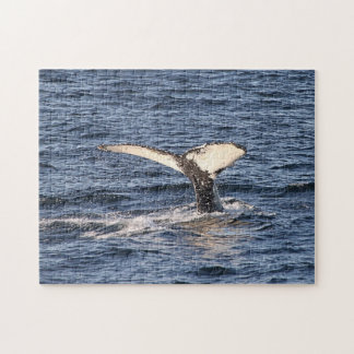 'A Whale of  a Tail' Puzzle
