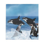 A whale of a world memo pads