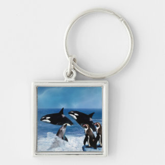 A whale of a world Silver-Colored square keychain