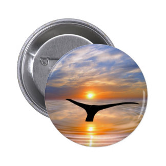 A whales tail at sunset 2 inch round button