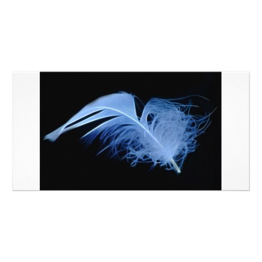 A whisper of a feather photo card