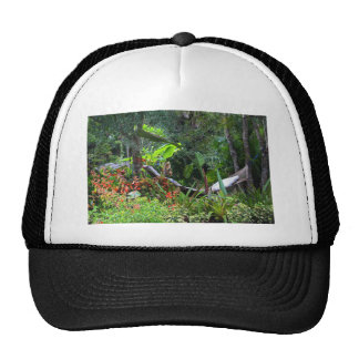 A Whistle from the Whippoorwill Trucker Hat