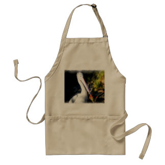 A white bird and its big beak adult apron
