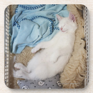 A white cat sleeping in a laundry basket, beverage coaster