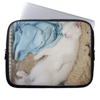 A white cat sleeping in a laundry basket, laptop sleeve