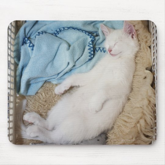 A white cat sleeping in a laundry basket, mouse pad