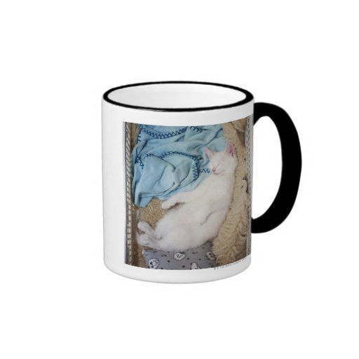 A white cat sleeping in a laundry basket, ringer coffee mug