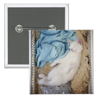 A white cat sleeping in a laundry basket, pinback button