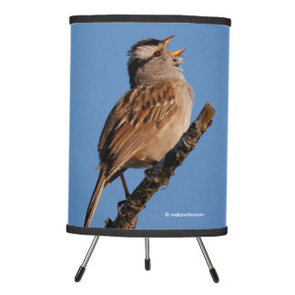 A White-Crowned Sparrow Sings to the Sun Tripod Lamp