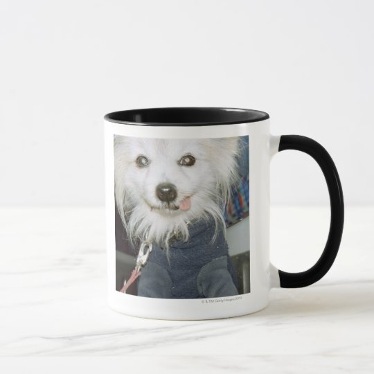 A white dog wearing clothes. mug