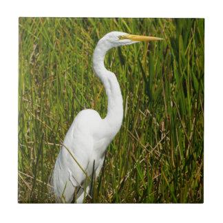 A White Egret in the Marsh Ceramic Tile