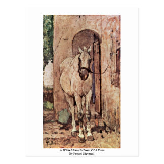 A White Horse In Front Of A Door Postcard
