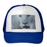 A white lion in Africa Trucker Hat
