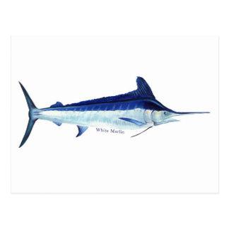 A white marlin post card