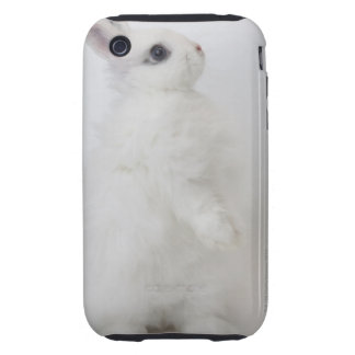 A white rabbit.Jersey Wooly. Tough iPhone 3 Covers