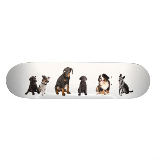 a whole lot of dogs skateboard deck