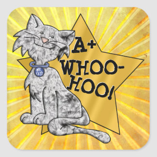 A+ Whoo-Hoo! Gray Cat, Gold Star, Square Reward Square Sticker