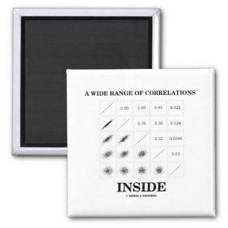 A Wide Range Of Correlations Inside Magnets