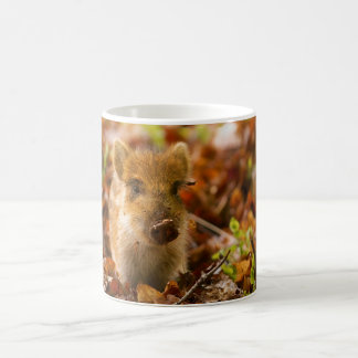 A Wild Boar Piglet Sus Scrofa in the Autumn Leaves Coffee Mug