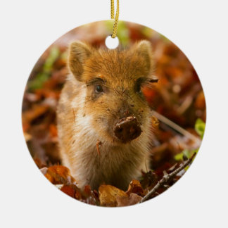 A Wild Boar Piglet Sus Scrofa in the Autumn Leaves Double-Sided Ceramic Round Christmas Ornament