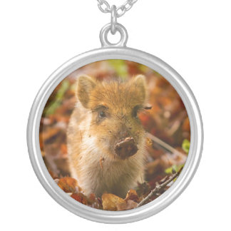 A Wild Boar Piglet Sus Scrofa in the Autumn Leaves Silver Plated Necklace