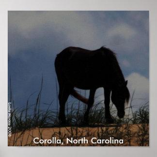 A Wild Horse of Corolla North Carolina Poster