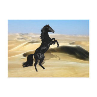 A wild rearing black stallion canvas print