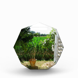 A window on the rural world award