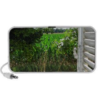 A window on the rural world mini speakers