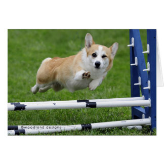 A WINK AND A WAVE AGILITY CORGI GREETING CARD