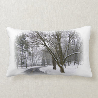 A Winter Afternoon Drive Throw Pillow