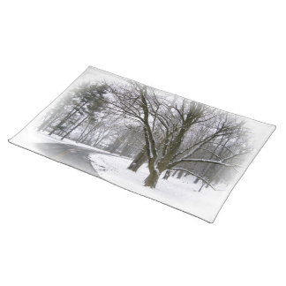 A Winter Afternoon Drive Place Mats