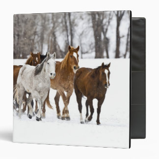 A winter scenic of running horses on The 2 3 Ring Binder