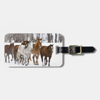 A winter scenic of running horses on The 2 Bag Tag