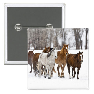 A winter scenic of running horses on The 2 2 Inch Square Button