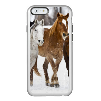 A winter scenic of running horses on The 2 Incipio Feather Shine iPhone 6 Case