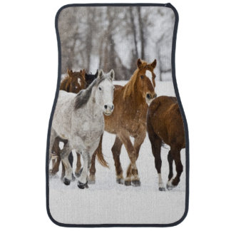 A winter scenic of running horses on The 2 Car Mat